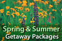 Spring & Summer Getaway Packages